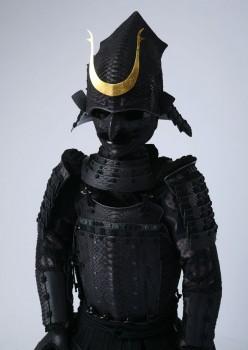 python_armor_20170313-03