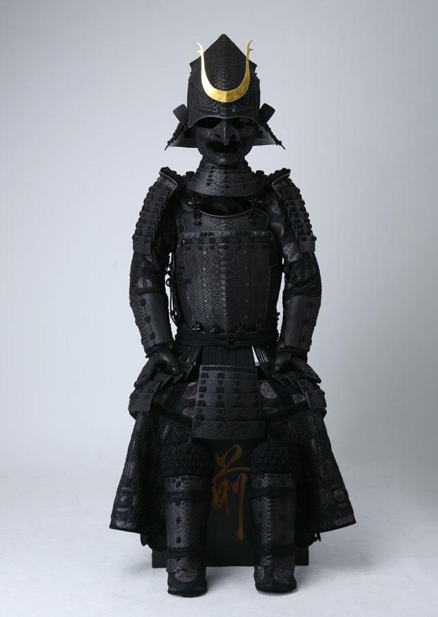 python_armor_20170313